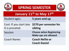 Sibling Spring Semester session for Chess Masters of Houston