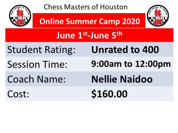 Online Summer camp for beginners on June 1st to 5th,2020