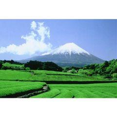 Gyokuro Green Tea