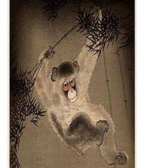 White Monkey Paw White Tea