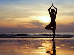 Wellness Ayurvedic Total Body Wellness Tea
