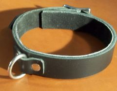 "1"" Wide Collar with Ring"