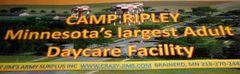 """Camp Ripley.Funny Political Bumper Sticker 3""""x11"""" size"""