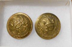 1832 pattern General Staff Button Set
