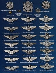 US Air Force Air Crew Badges (Wings)