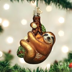 Old World Sloth