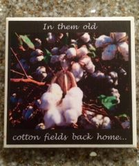 In Them Old Cotton Fields - Original Mississippi Delta Photography Coasters