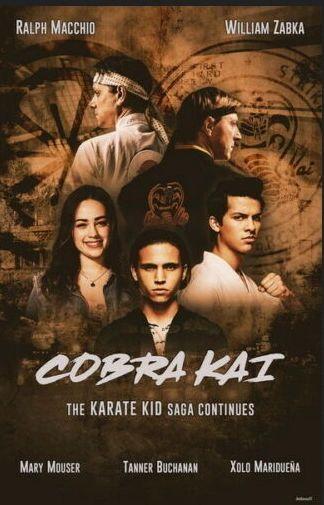 Cobra Kai: Season 1