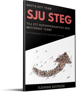 "Sjustegs-strategin, gratis, ""The Gamechanger"""