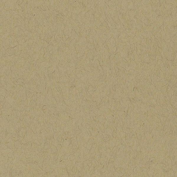 Bazzill Cardstock 12x12 - Classic - Kraft