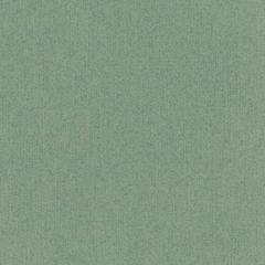 Bazzill Cardstock 12x12 - Classic - Sage