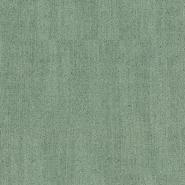 Bazzill Cardstock 12x12 - Classic - Sage