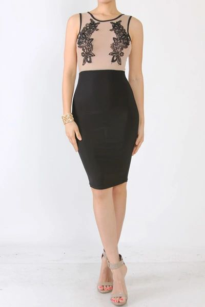 Nude and Black Lace Embroidered Sleeveless BodyCon Dress