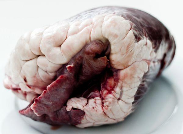 30lb Pork Heart