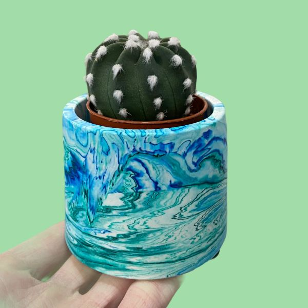 Marbled Plant Pot with Cactus Plant