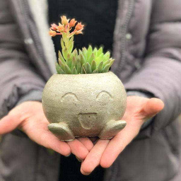 Concrete Pokemon Oddish Pot | Plant Holder | Cacti | Succulent | Houseplant Holder