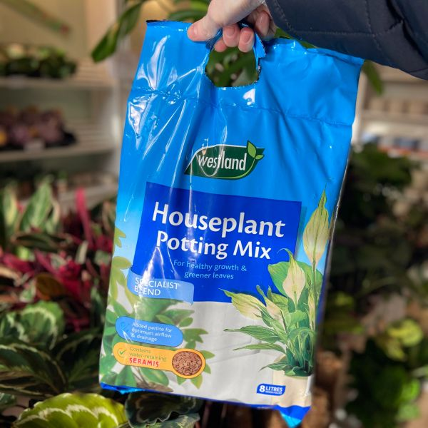 Houseplant Potting Mix (8 litre bag)
