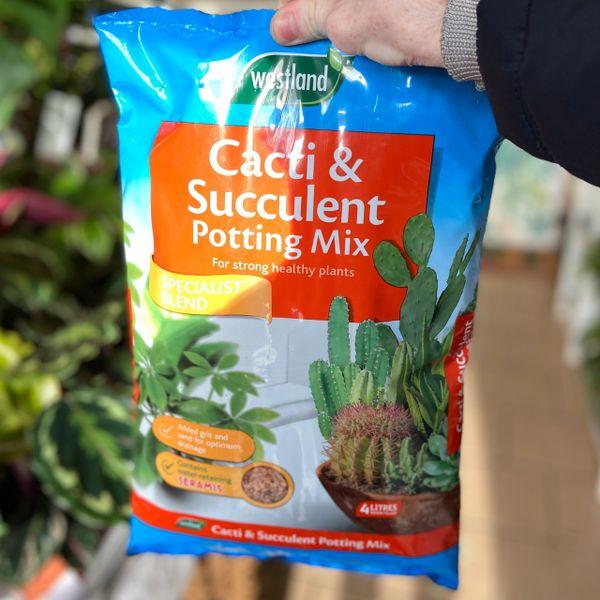 Cactus and Succulent Potting Mix (4 litre bag)