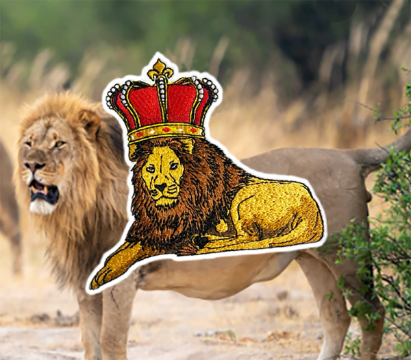 Beautiful Lion African King Patch Hip Hop 12cm / 4.7 inch
