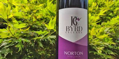 Byrd Cellars Norton wine bottle, green tree leaves background
