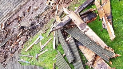 Garden Clearance and Jungle Clearance in Eastbourne