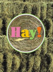 GC Hay: Hay! Thank You!