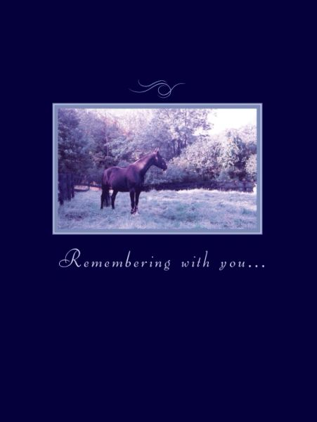 GC 2: Remembering with you...