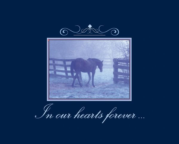 Sympathy Card: In our hearts forever...