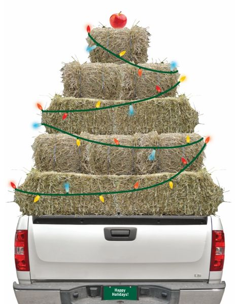 Christmas Card: Truck loaded with Hay wrapped in Lights