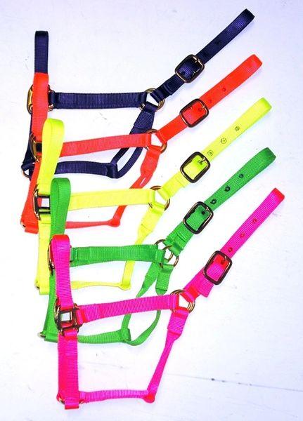 Neon Nylon Horse Halters