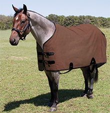 Canvas Stable Blanket