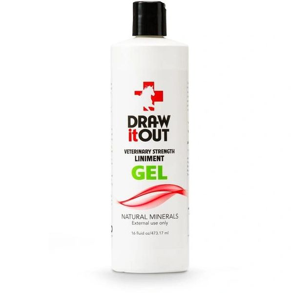 Case of 12 Draw It Out 16oz Gel