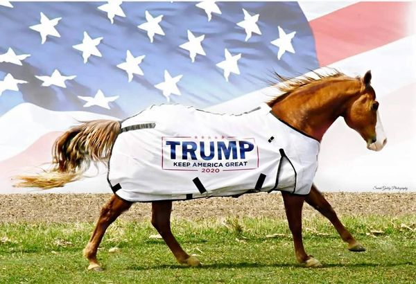 TRUMP Fly Sheet
