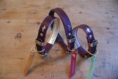 Fig padded luxury leather dog collar