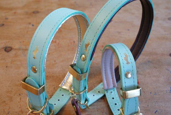 Mint padded luxury leather dog collar