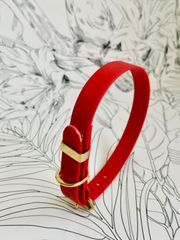 Red all weather dog collar