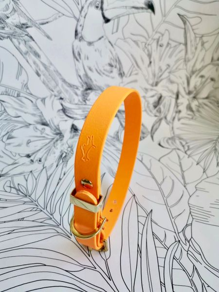 Orange all weather dog collar