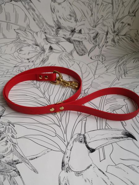 Red all weather dog lead