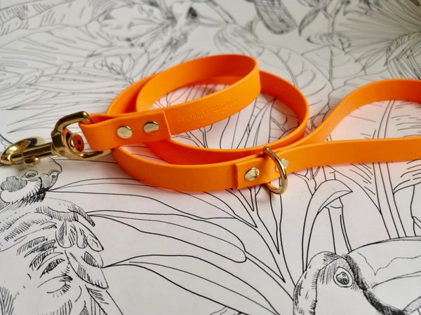 Orange all weather dog lead