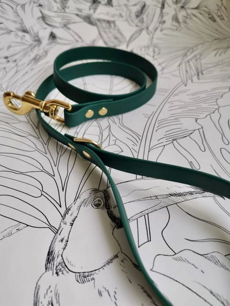 Green all weather dog lead