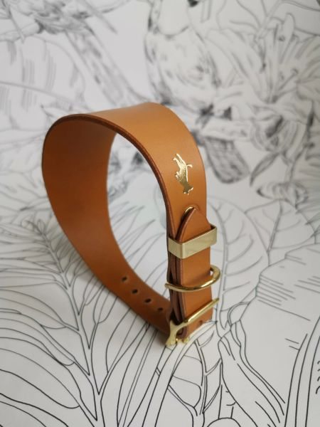 Nacho tan luxury leather grey hound collar
