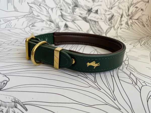 Forest padded luxury leather dog collar