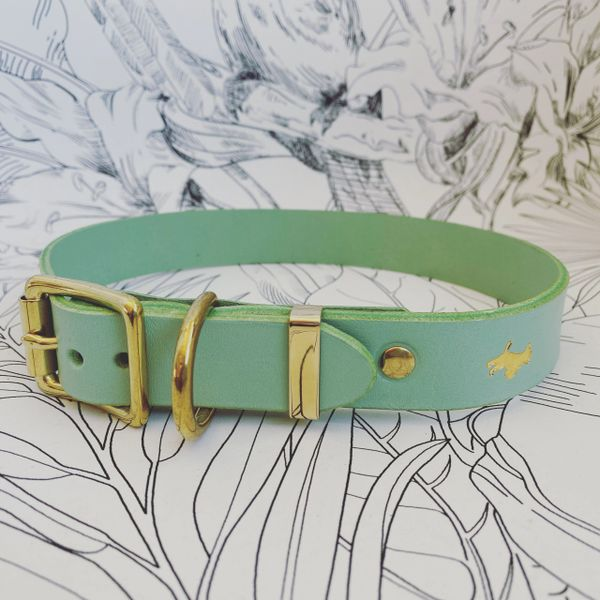 Mint luxury leather dog collar