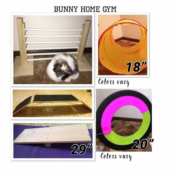 HR Bunny Gym
