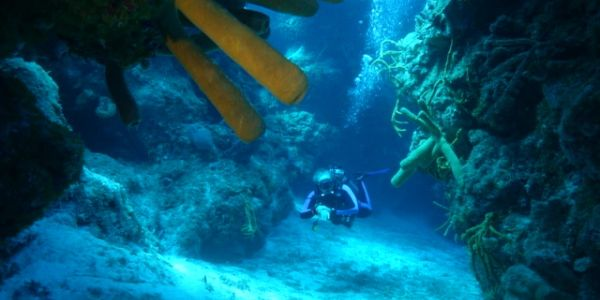 Denise Boniface, owner of Aqua-Nuts Diving. Diving through caverns off of Cozumel.