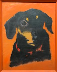 Pup on Orange