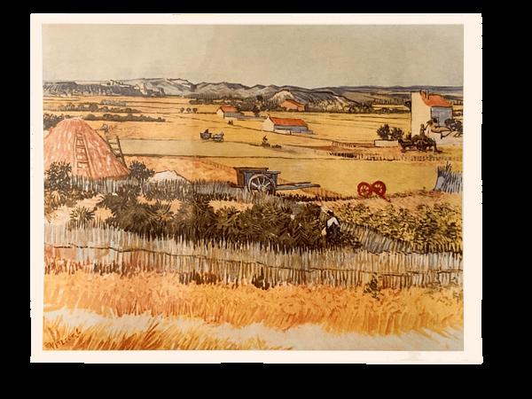 """Vegetable Gardens"" (Print) - Vincent Van Gogh"