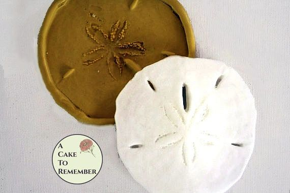 "3.5"" Sand dollar silicone mold for cake decorating M1031"