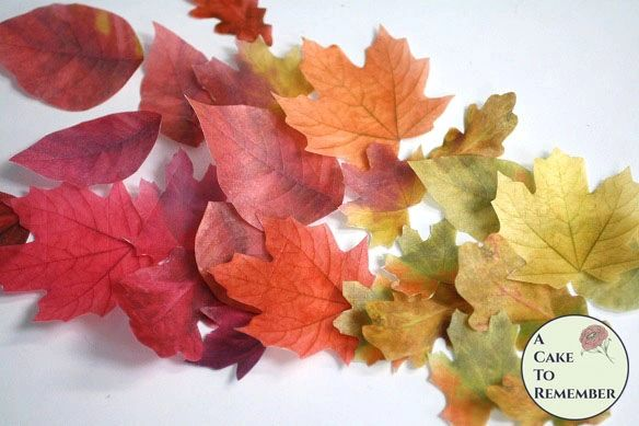 "15 Wafer paper edible autumn leaves for cakes, printed on both sides. 1.5"" to 3"""
