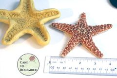 "Extra-large 4 1/2"" starfish Mold for cake decorating or polymer clay M43"